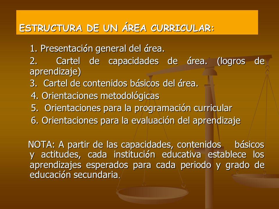 ESTRUCTURA DE UN ÁREA CURRICULAR: