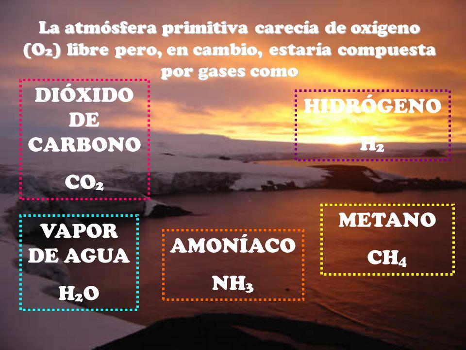 DIÓXIDO DE CARBONO HIDRÓGENO H2 CO2 METANO VAPOR DE AGUA CH4 AMONÍACO
