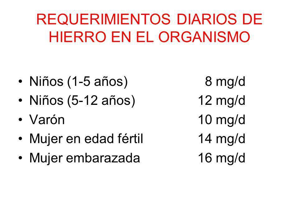REQUERIMIENTOS DIARIOS DE HIERRO EN EL ORGANISMO