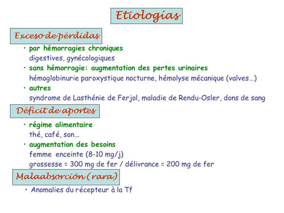 Etiologías Exceso de pérdidas Déficit de aportes Malaabsorción (rara)