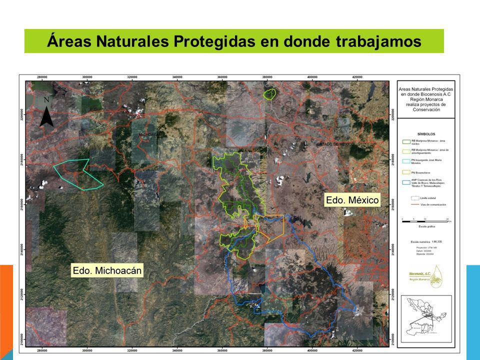Áreas Naturales Protegidas en donde trabajamos