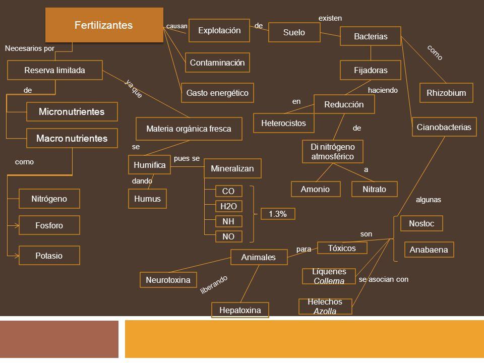 Fertilizantes Micronutrientes Macro nutrientes Explotación Suelo