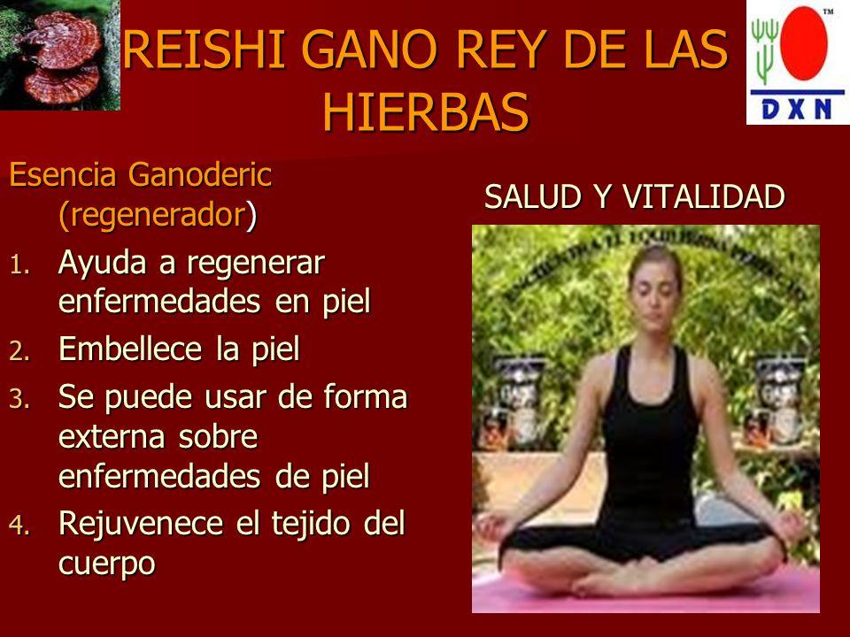 REISHI GANO REY DE LAS HIERBAS