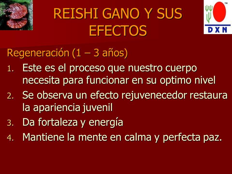REISHI GANO Y SUS EFECTOS
