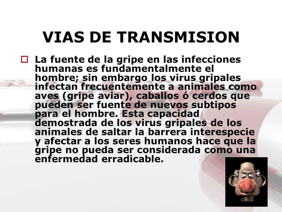 VIAS DE TRANSMISION