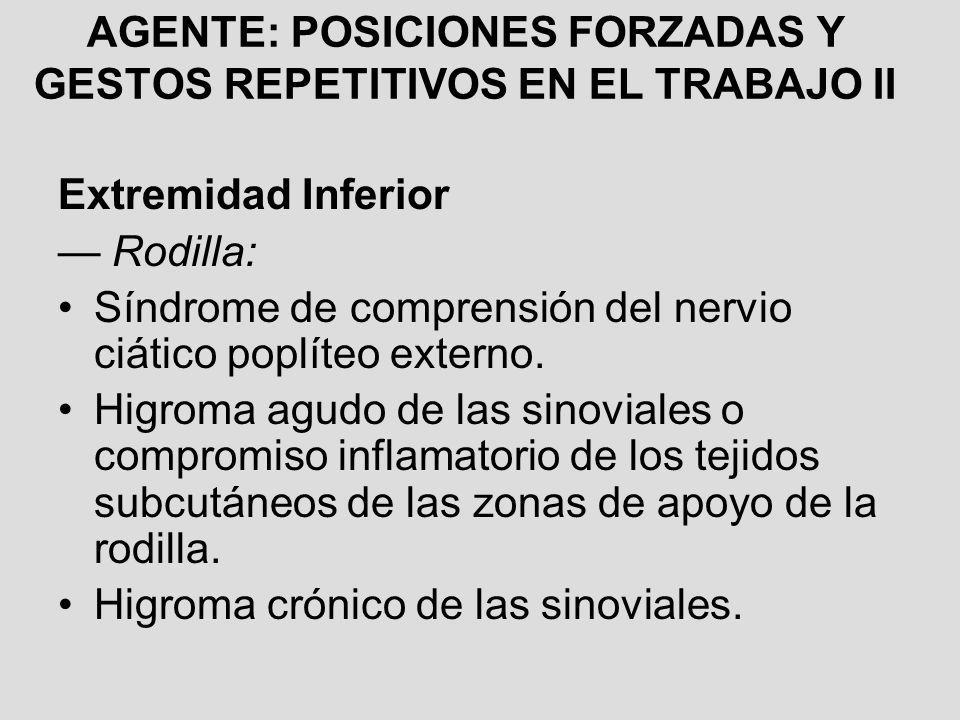 AGENTE: POSICIONES FORZADAS Y GESTOS REPETITIVOS EN EL TRABAJO II