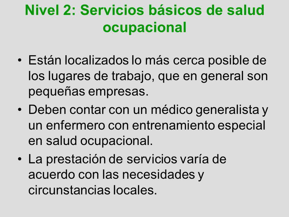 Nivel 2: Servicios básicos de salud ocupacional