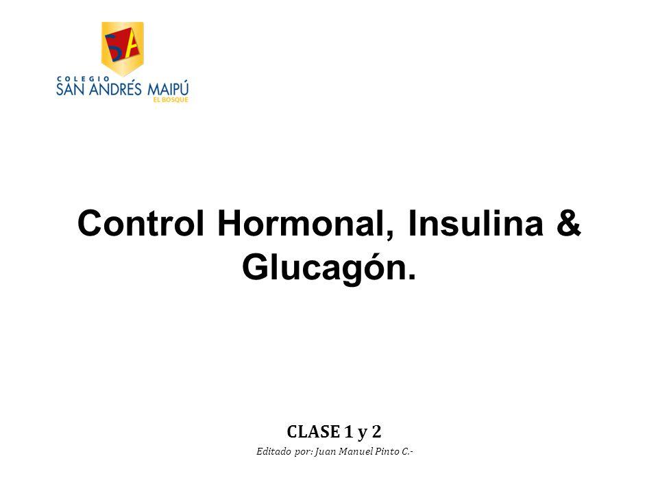 Control Hormonal, Insulina & Glucagón.