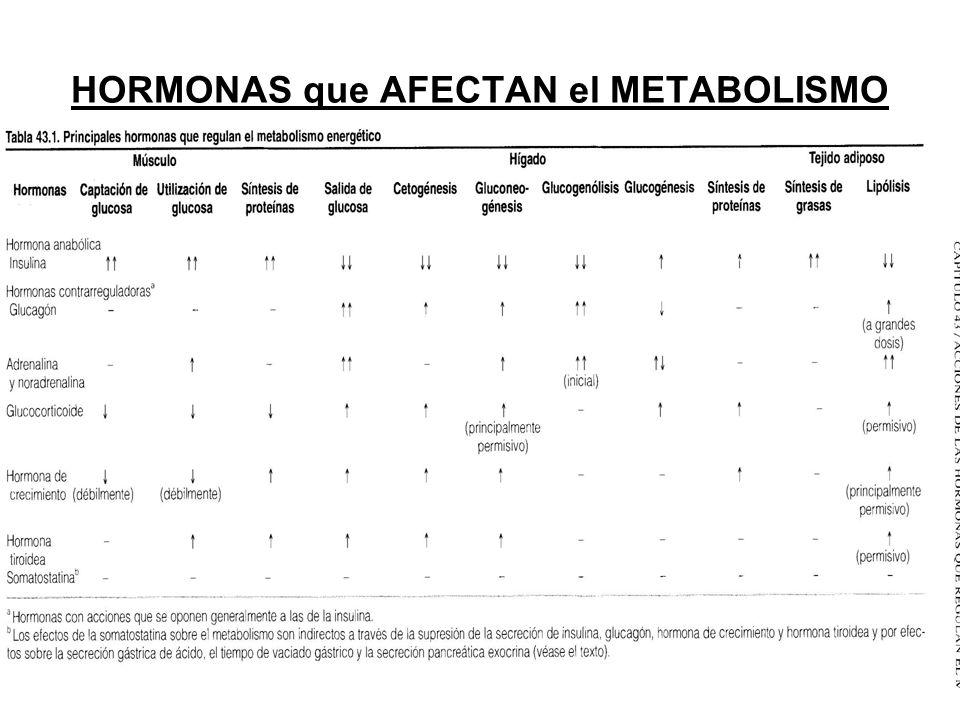 HORMONAS que AFECTAN el METABOLISMO