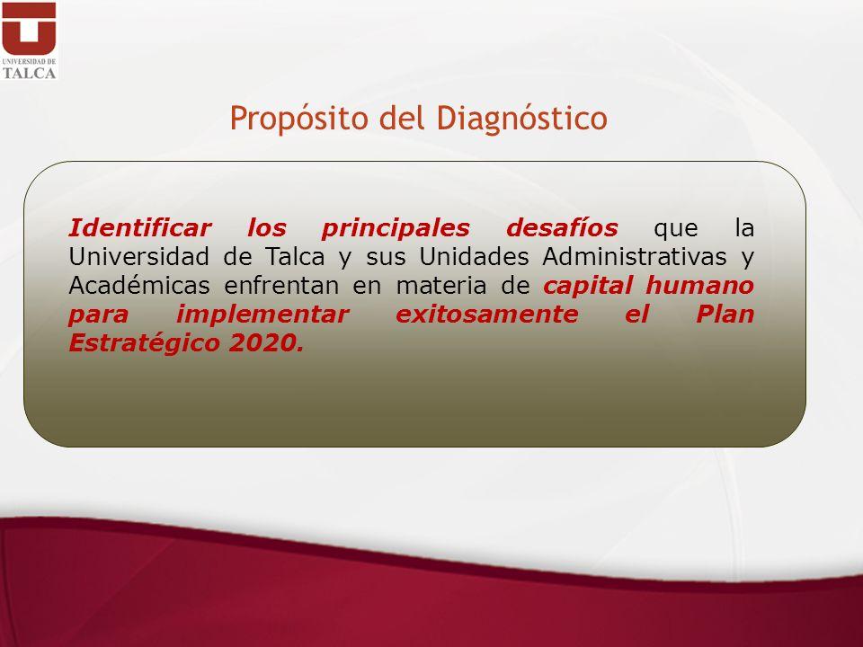 Propósito del Diagnóstico