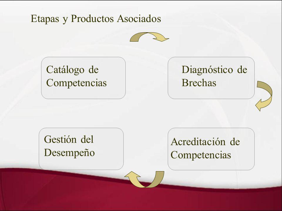 Etapas y Productos Asociados