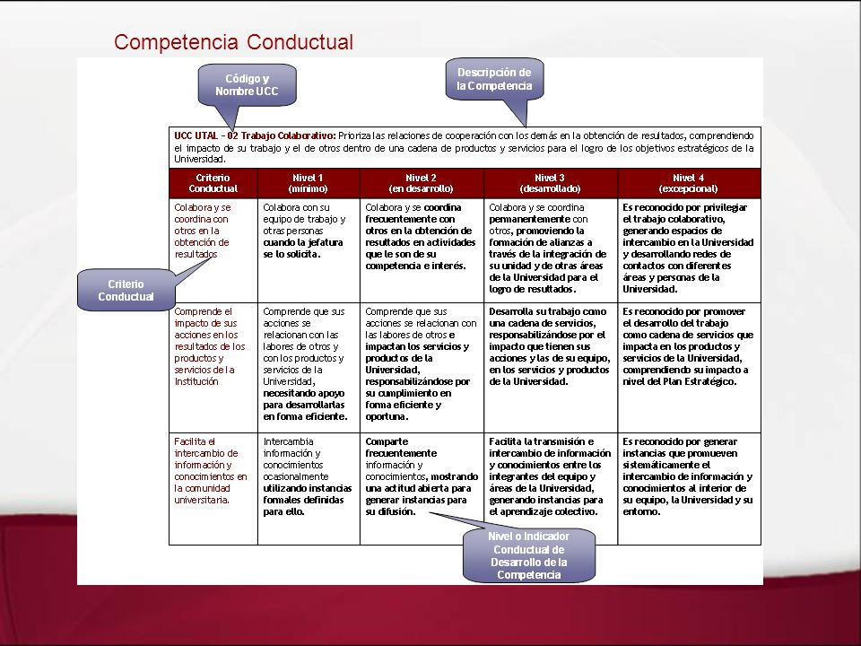 Competencia Conductual