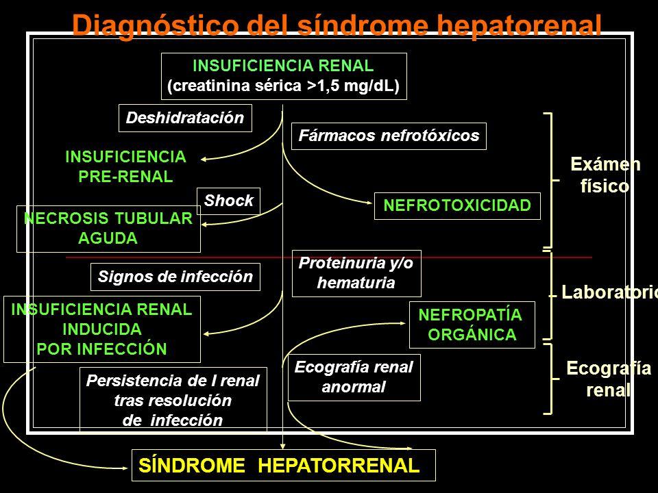 Diagnóstico del síndrome hepatorenal