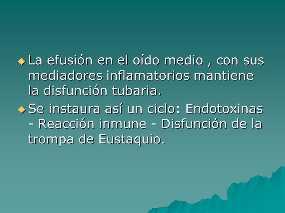 La efusión en el oído medio , con sus mediadores inflamatorios mantiene la disfunción tubaria.