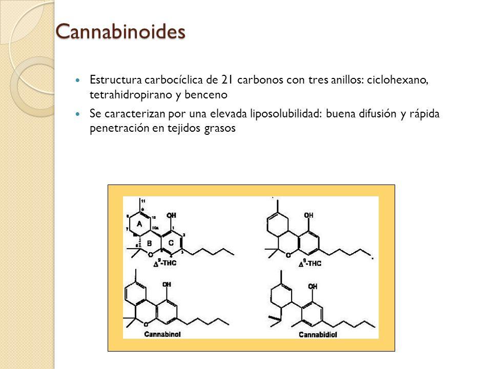 CannabinoidesEstructura carbocíclica de 21 carbonos con tres anillos: ciclohexano, tetrahidropirano y benceno.