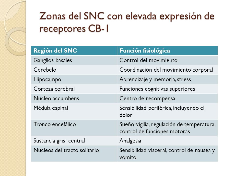Zonas del SNC con elevada expresión de receptores CB-1