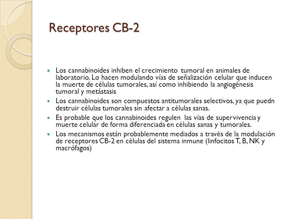 Receptores CB-2