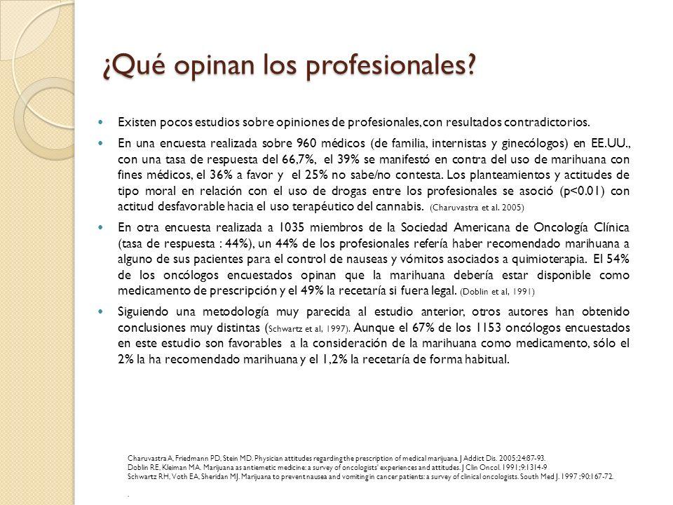 ¿Qué opinan los profesionales