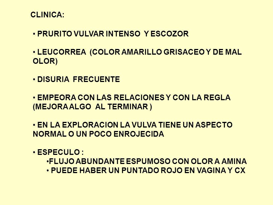 CLINICA: PRURITO VULVAR INTENSO Y ESCOZOR. LEUCORREA (COLOR AMARILLO GRISACEO Y DE MAL OLOR) DISURIA FRECUENTE.