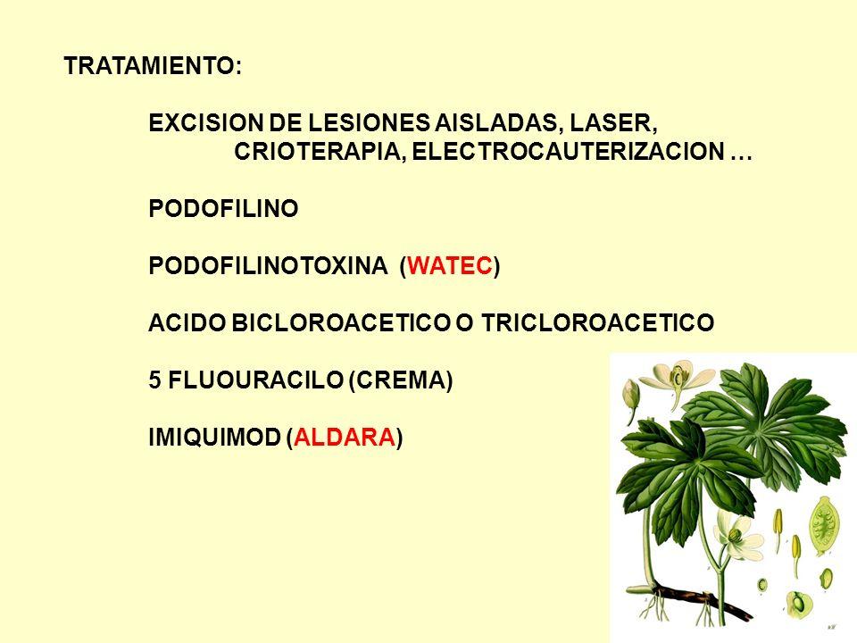 TRATAMIENTO: EXCISION DE LESIONES AISLADAS, LASER, CRIOTERAPIA, ELECTROCAUTERIZACION … PODOFILINO.