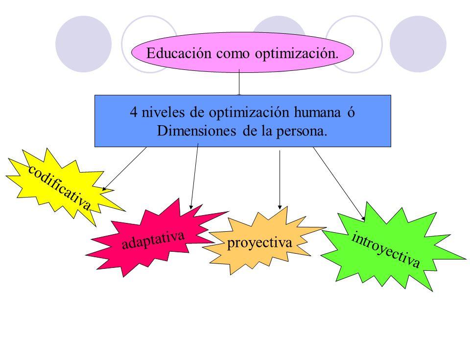 Educación como optimización.