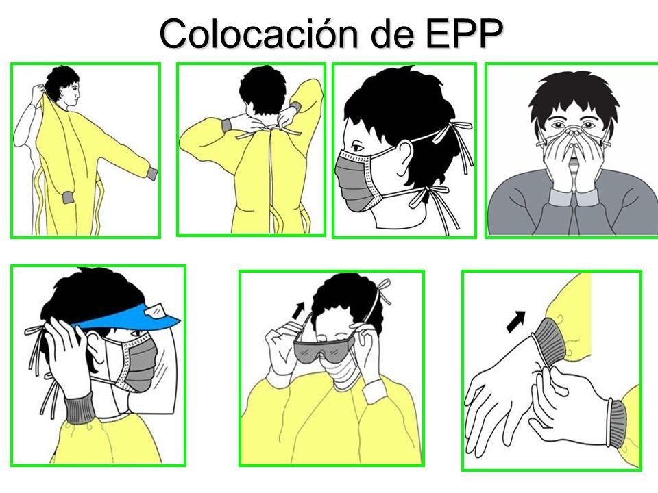 Colocación de EPP PPYCIIH. Junio 2011