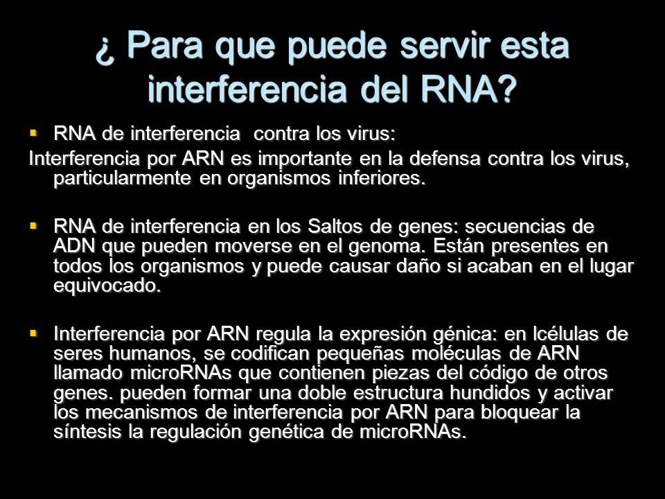 ¿ Para que puede servir esta interferencia del RNA