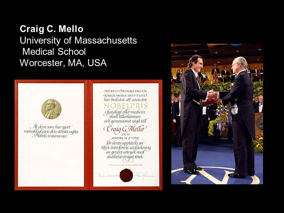 Craig C. Mello University of Massachusetts Medical School Worcester, MA, USA