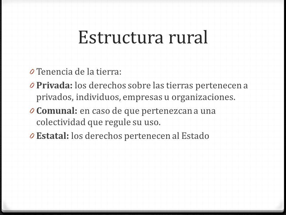 Estructura rural Tenencia de la tierra: