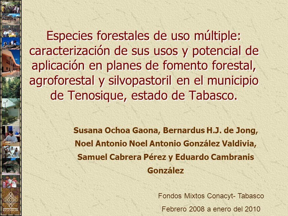 Fondos Mixtos Conacyt- Tabasco