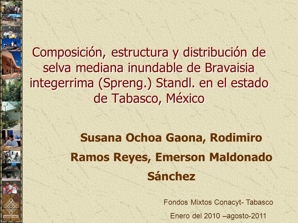 Susana Ochoa Gaona, Rodimiro Ramos Reyes, Emerson Maldonado Sánchez