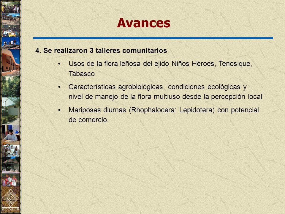 Avances 4. Se realizaron 3 talleres comunitarios