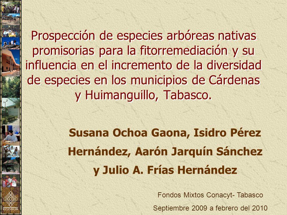 Prospección de especies arbóreas nativas promisorias para la fitorremediación y su influencia en el incremento de la diversidad de especies en los municipios de Cárdenas y Huimanguillo, Tabasco.