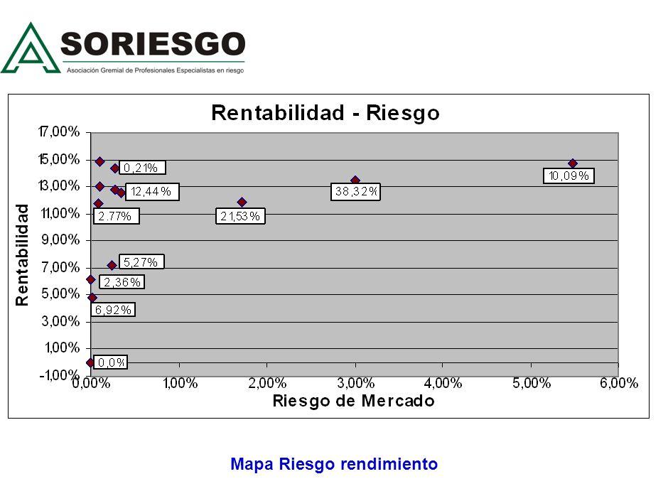 Mapa Riesgo rendimiento