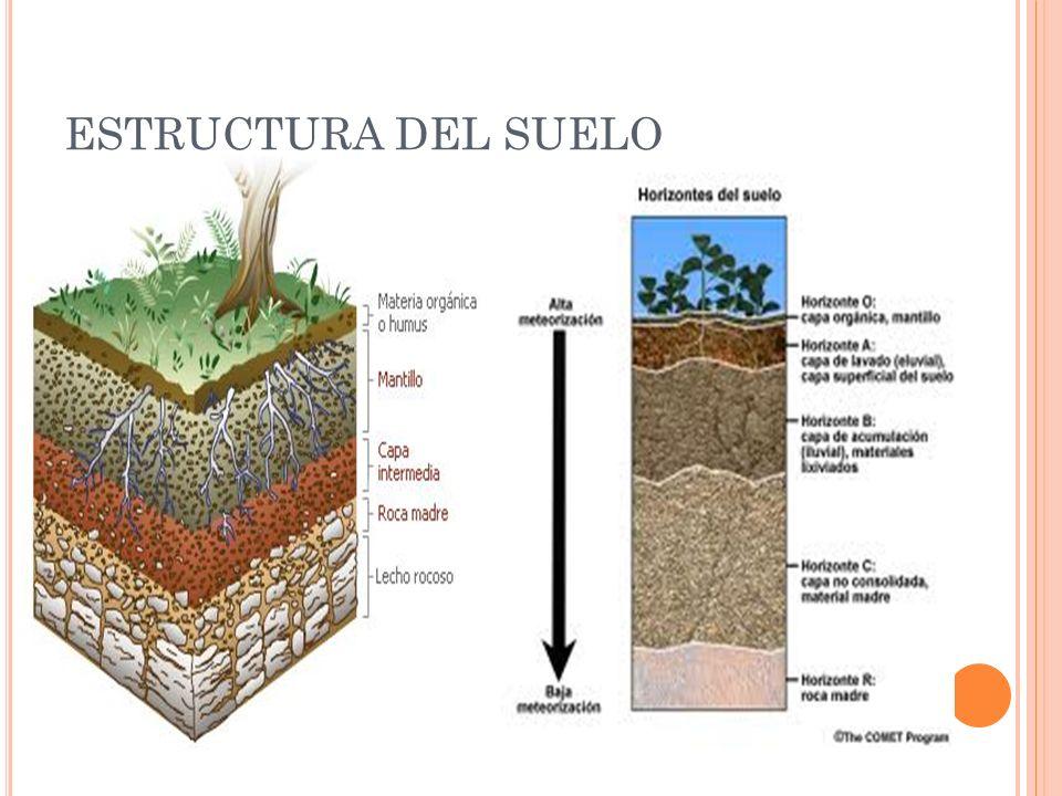 El suelo ppt video online descargar for Partes del suelo