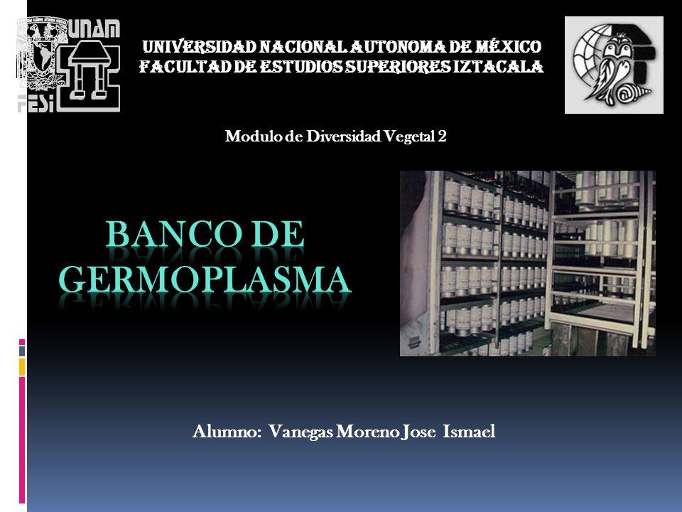 BANCO DE GERMOPLASMA Alumno: Vanegas Moreno Jose Ismael