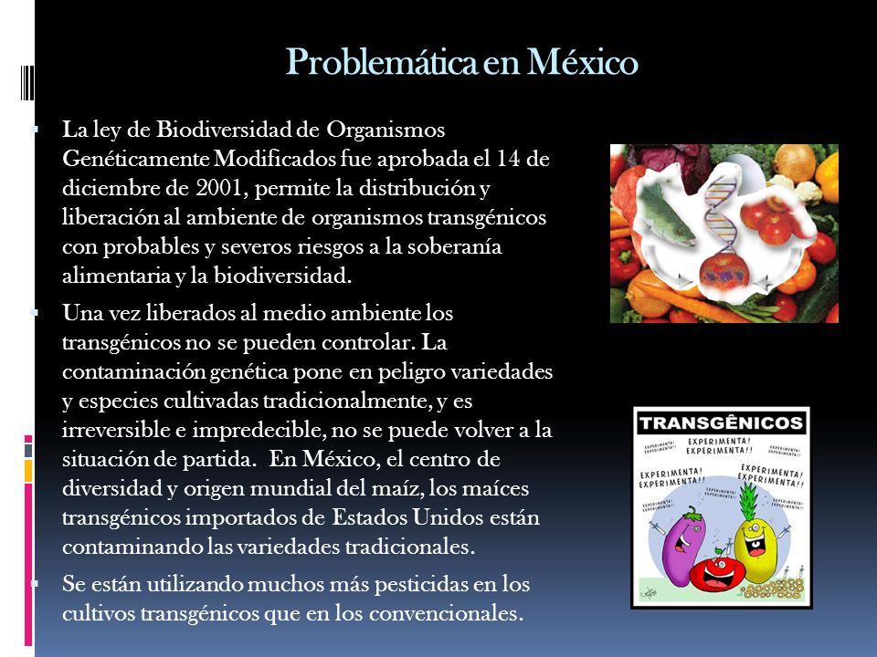 Problemática en México