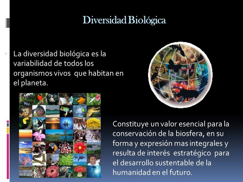 Diversidad Biológica La diversidad biológica es la variabilidad de todos los organismos vivos que habitan en el planeta.