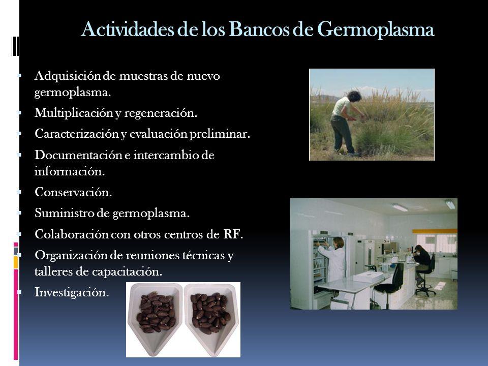 Actividades de los Bancos de Germoplasma