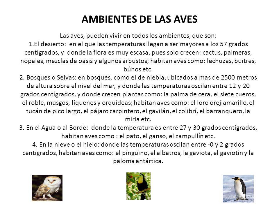 AMBIENTES DE LAS AVES