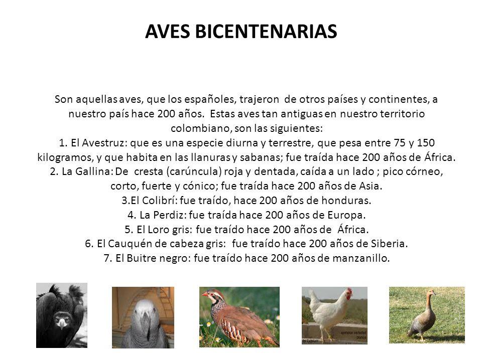 AVES BICENTENARIAS