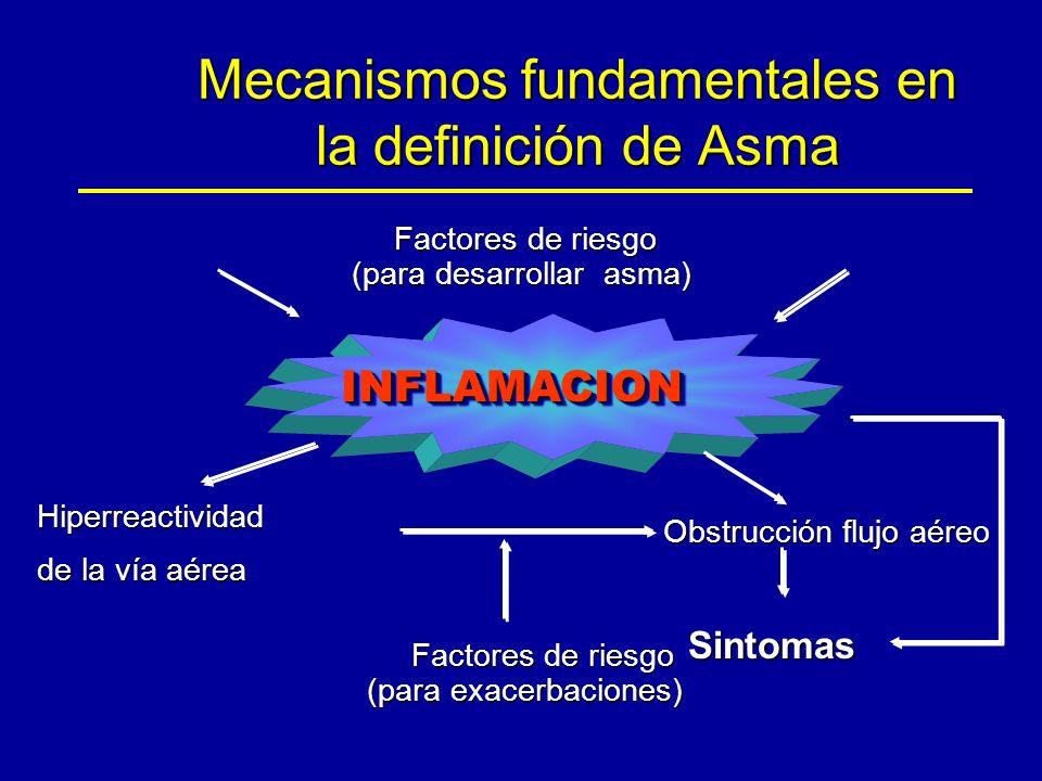 Mecanismos fundamentales en la definición de Asma