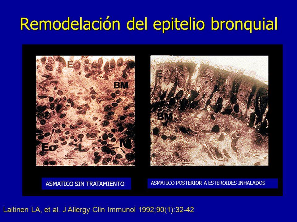 Remodelación del epitelio bronquial