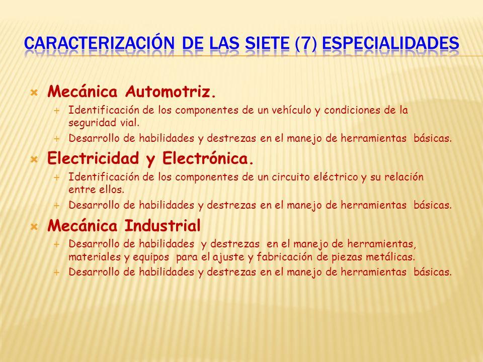 Caracterización de las siete (7) especialidades