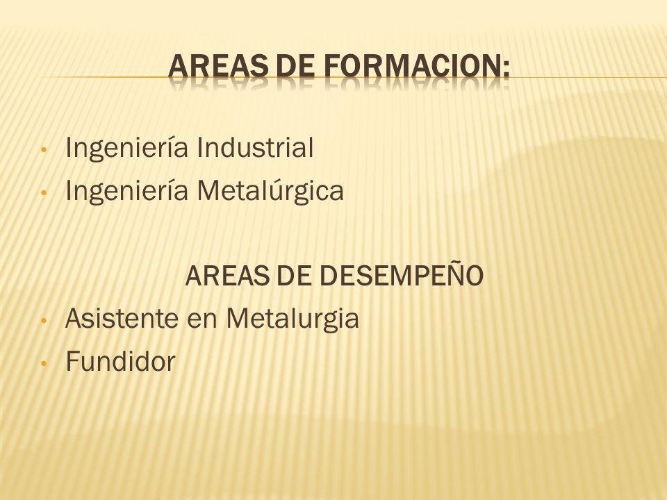AREAS DE FORMACION: Ingeniería Industrial Ingeniería Metalúrgica