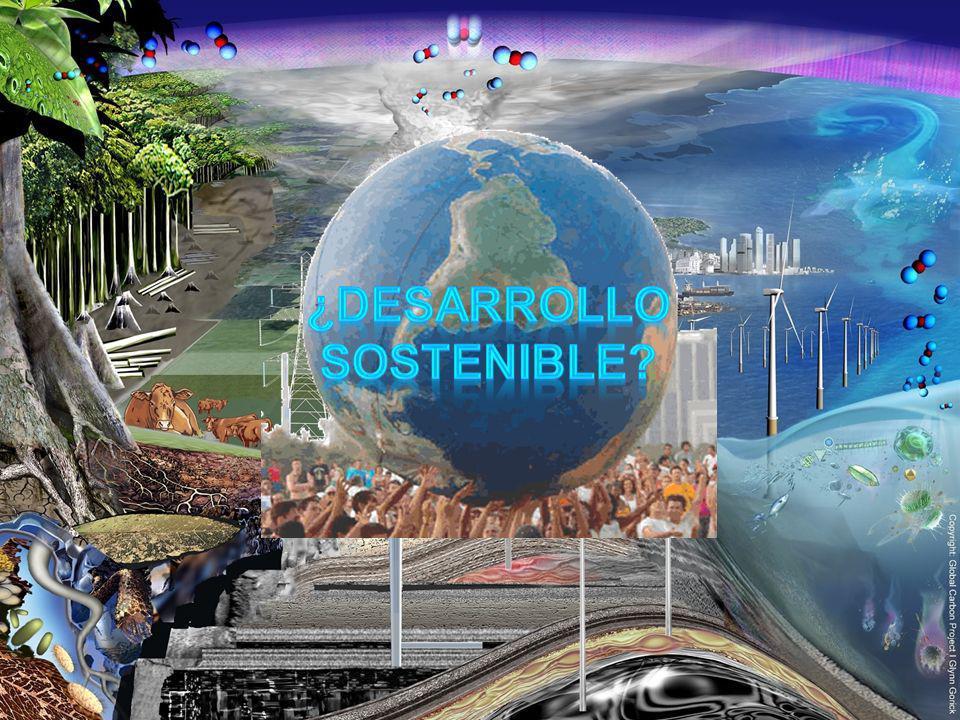 ¿Desarrollo sostenible