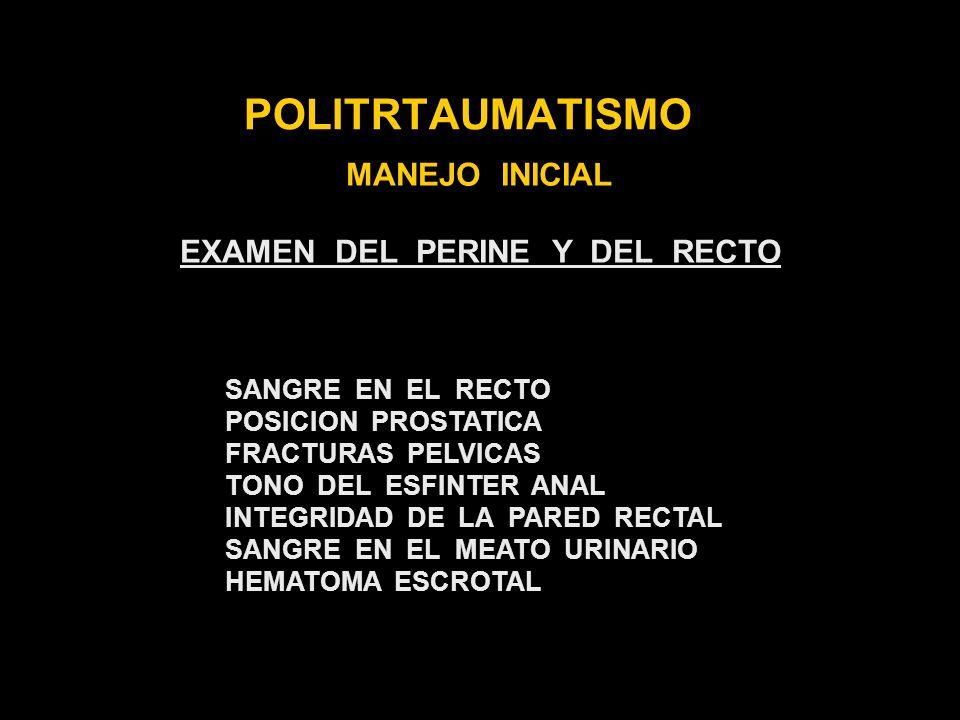 EXAMEN DEL PERINE Y DEL RECTO
