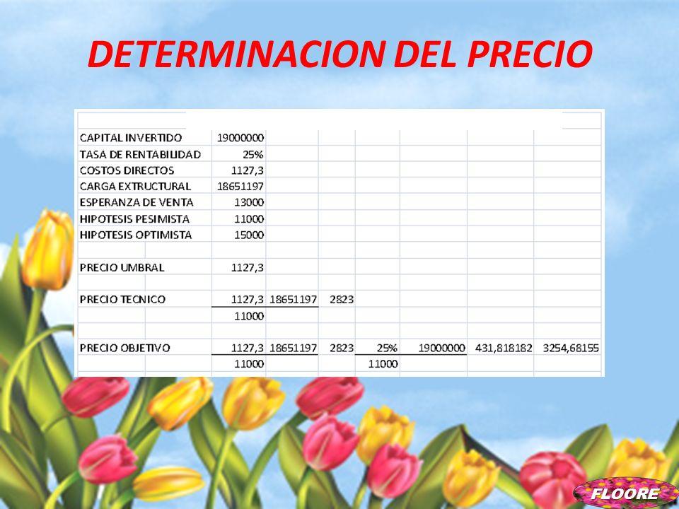DETERMINACION DEL PRECIO