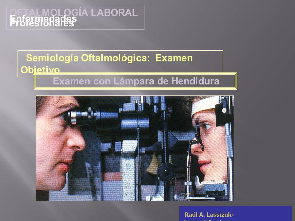 OFTALMOLOGÍA LABORAL Enfermedades Profesionales. Semiología Oftalmológica: Examen Objetivo. Examen con Lámpara de Hendidura.