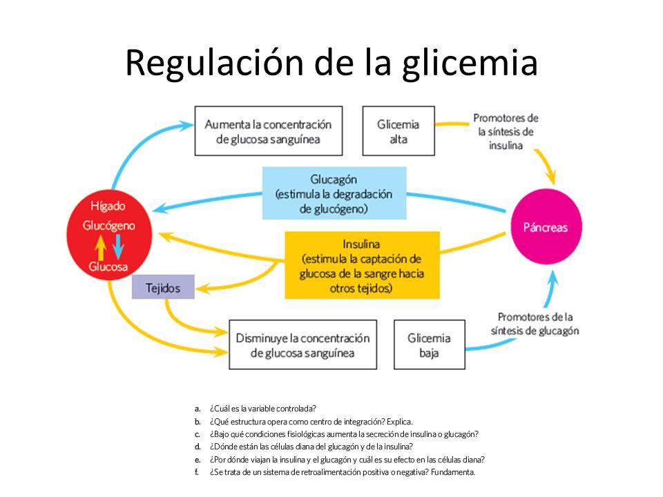CLASE 2 – REFORZAMIENTO DE CONTENIDOS - ppt video online